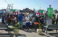 Matanzas: Destacan poder de convocatoria de Feria del Libro